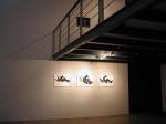 NSA Gallery